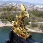 改修後の高松宮記念における穴馬の傾向
